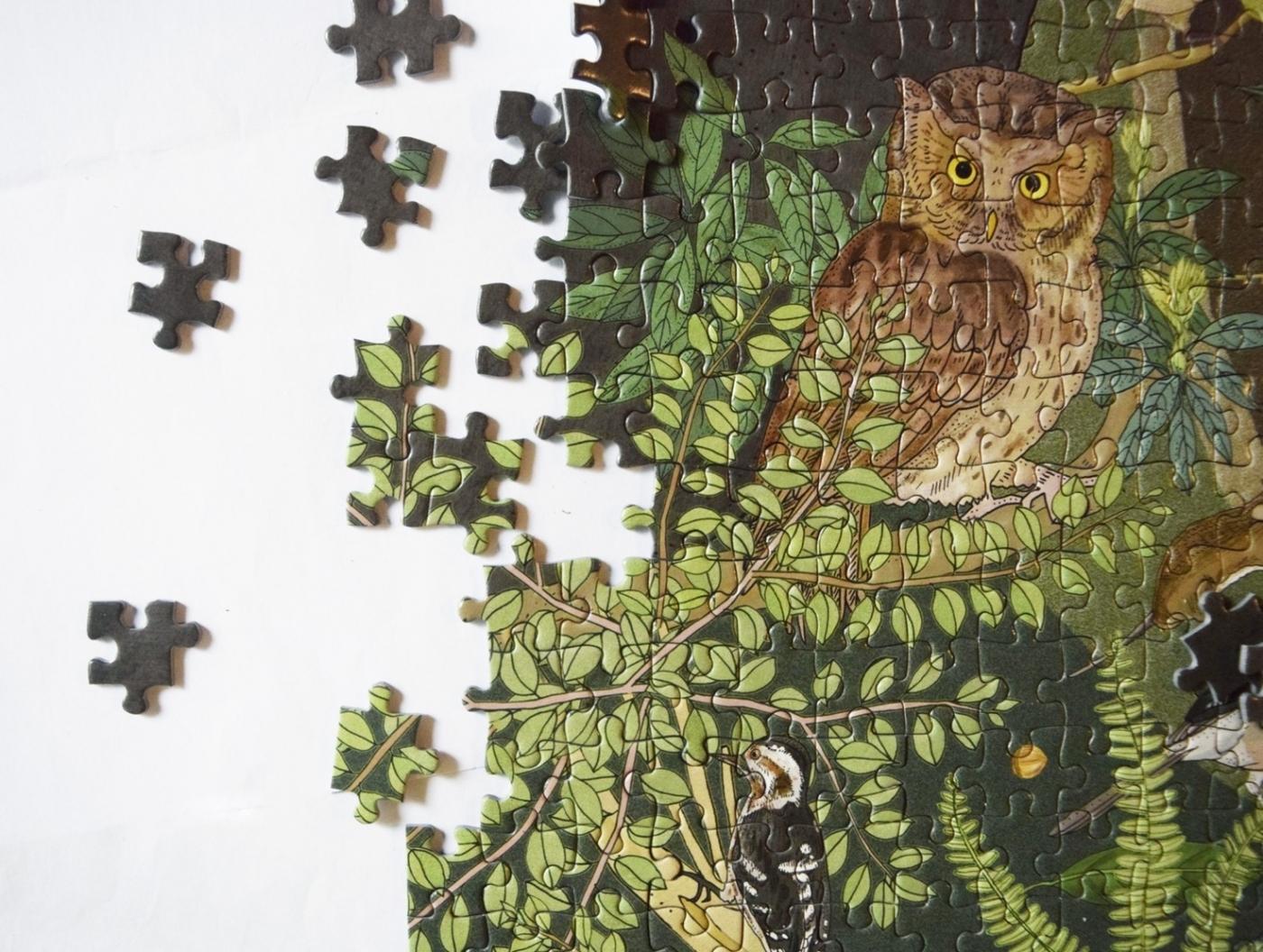 2021林務局「生命之森」拼圖5.jpeg